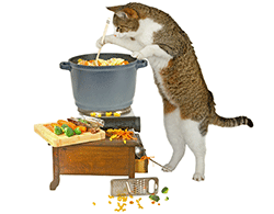 Cat standing over a pot cooking a meal